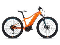 2021 Giant Fathom E+ jr.